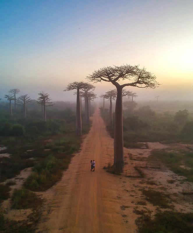 Madagascar-686