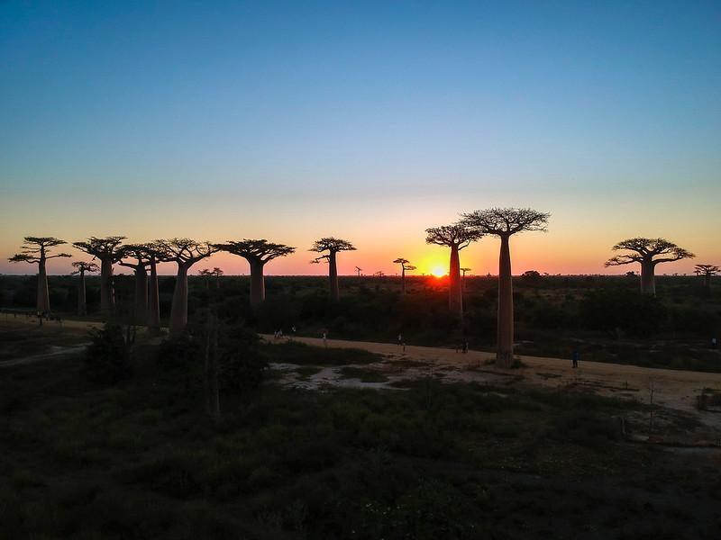 Madagascar-562