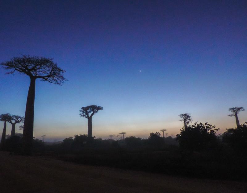 Madagascar-51