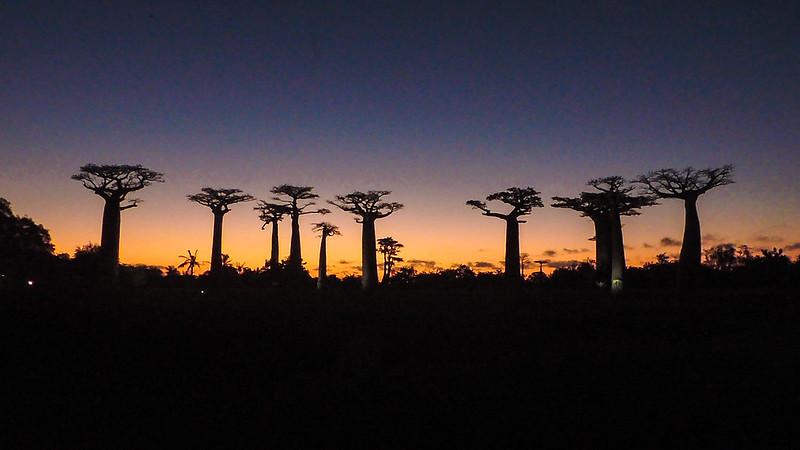 Madagascar-6