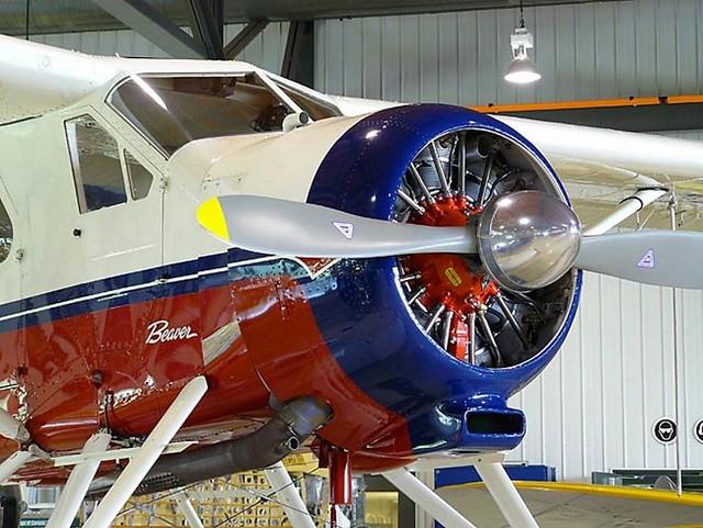 DeHavilland DHC-2 Beaver 14
