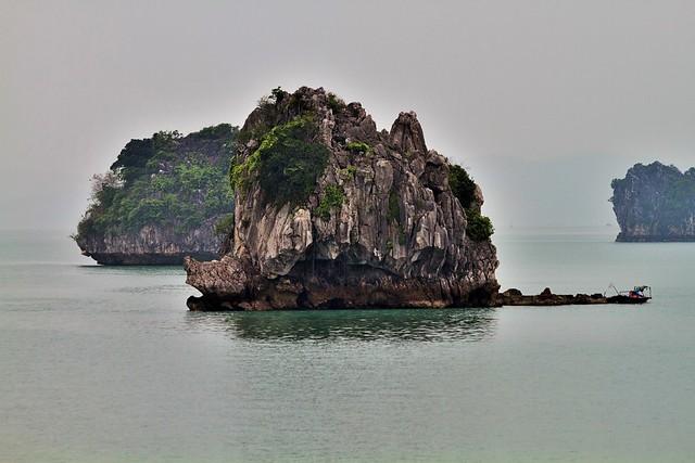 Viet Nam , baie d'Halong
