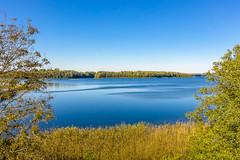 Lake | Utena county aerial