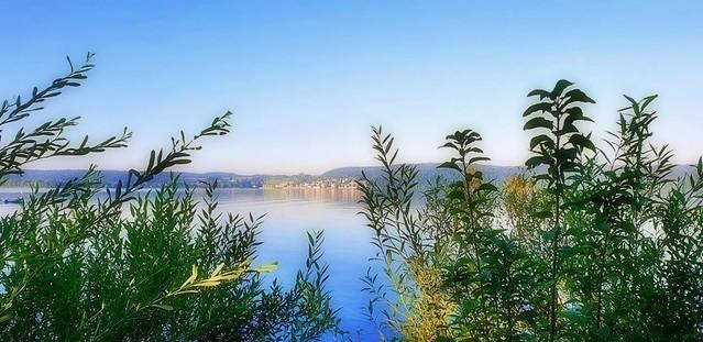 Le Bodensee - Lac de Constance