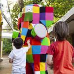 Elmer the Elephant | © Robin Mair