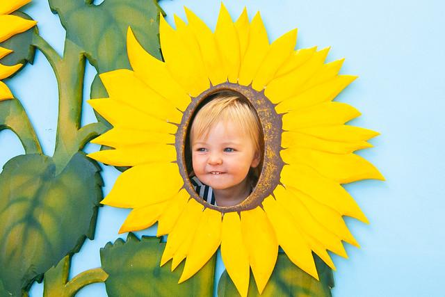 Kids' Corner Sunflowers