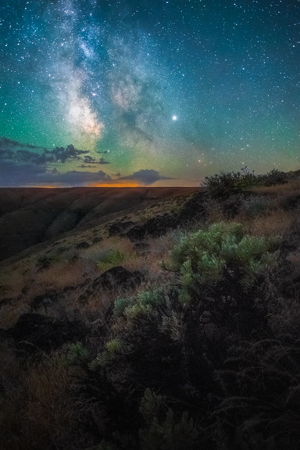 Sage brush underneath the Milky Way in the heat of summer. Something I always enjoy doing while out here is crushing a few sage leaves in my hand and breathing in that wonderful deserty smell #aromatherapy --- Gear: @NikonUSA D850 @NikonUSA 20mm F 1.8 @3L
