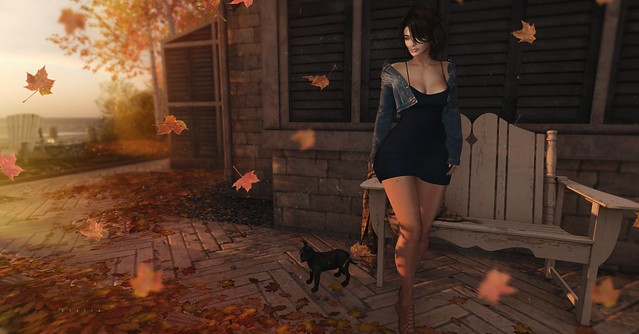 [...autumn shows us how beautiful it can be to let things go]