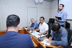 7ª Ad Referendum - Comissão de Legislação e Justiça