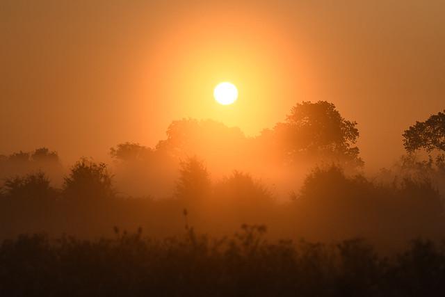 Sunrise at Stodmarsh