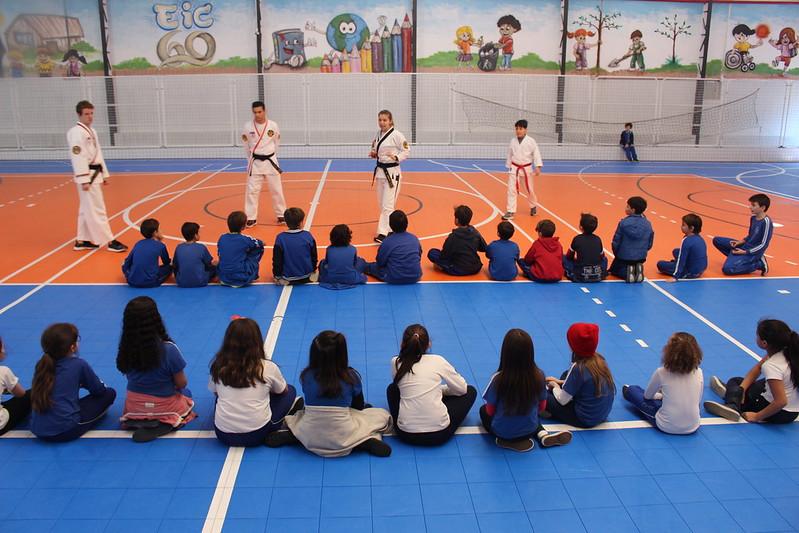 Taekwondo - EFAI