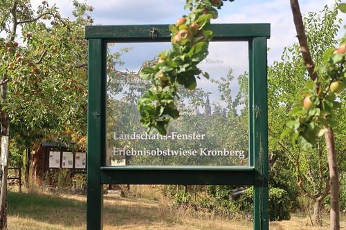 Landschaftsfenster auf der Erlebnisobstwiese Kronberg