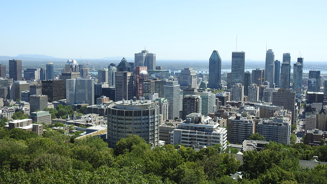 Mount Royal in the Sun