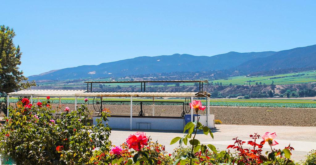 Soledad - Valley