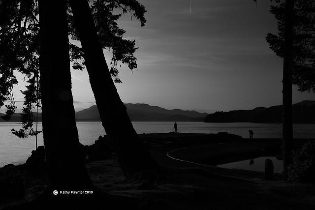 April Point Photographer Sillouette 0158