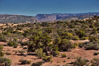 A Land of Reds and Greens and then Canyons of the Colorado River (Arches National Park)