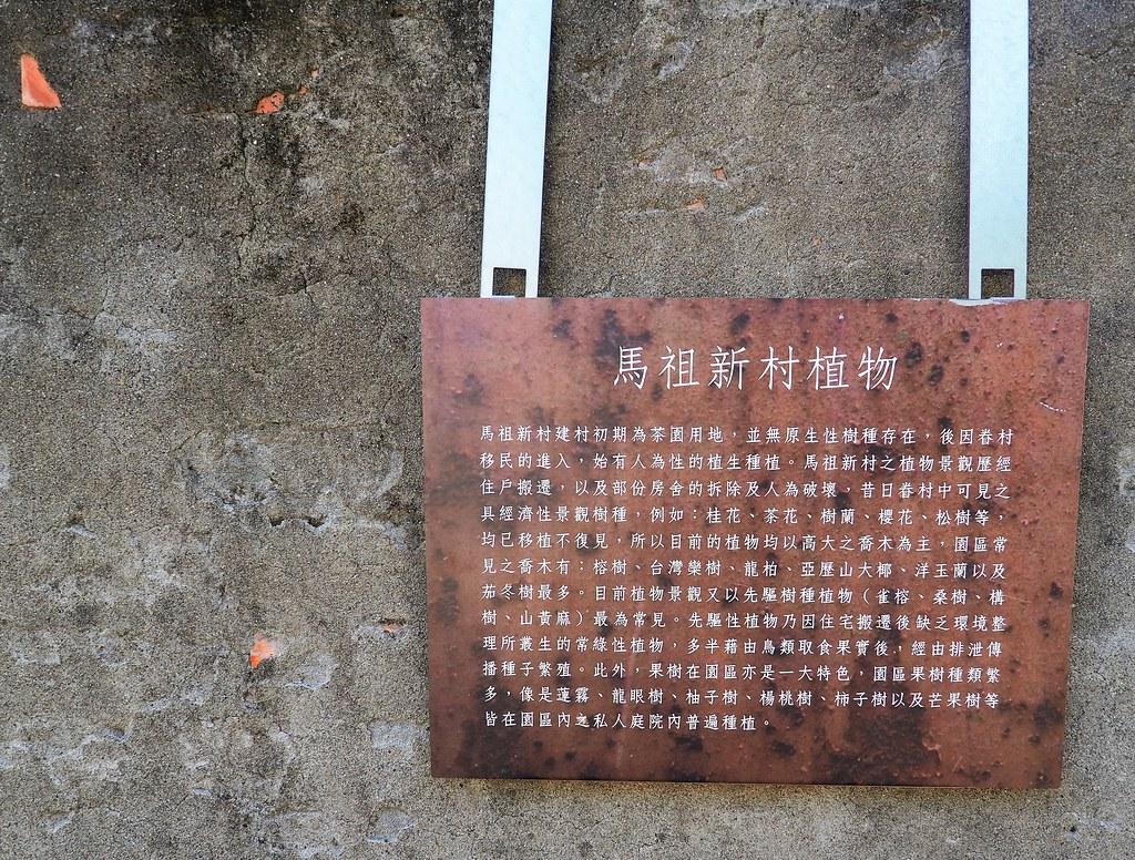 桃園眷村 (22)