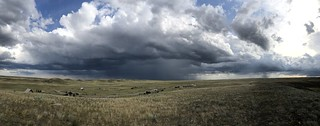 Grasslands National Park West Block - more drama | by Pierre Yeremian