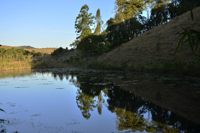 Espelho na lagoa