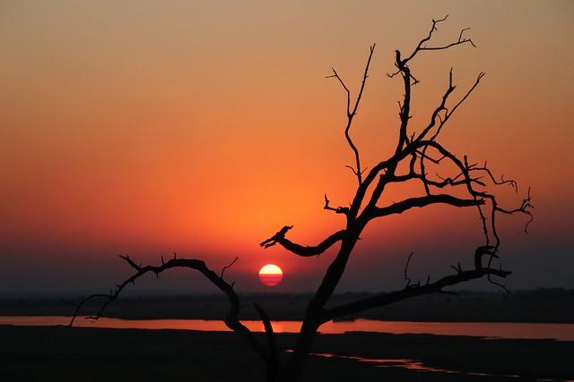 Last rays of the sun over the Chobe River, BOTSWANA 20180911