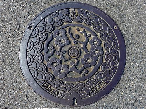 Chinzei Saga, manhole cover (佐賀県鎮西町のマンホール)