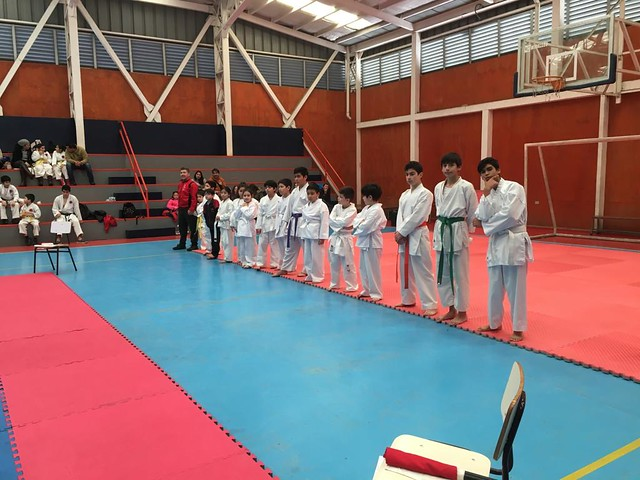 Karate WKF Torneo Regional Open Bio bio