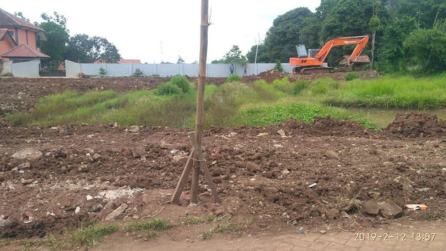 Land Clearing 03
