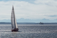 Sailing in Seattle harbour area