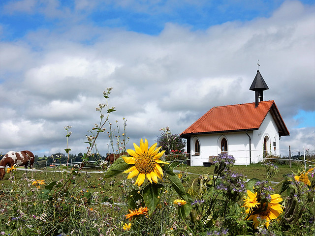 Schutzengelkapelle, Algäu - Germany (N4192)