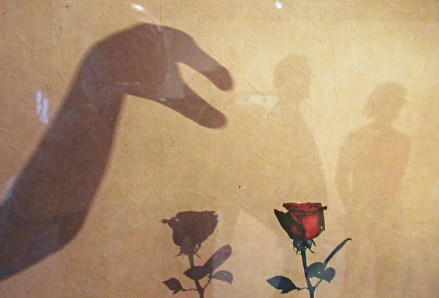 Y a pas de rose qui pique sans être aimée