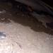 20180802 1905 - leaking crawlspace - wet corner - 07051981