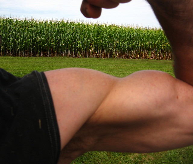 BIG BULGING BICEPS