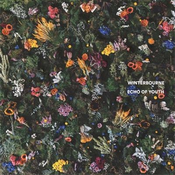 Winterbourne - Echo Of Youth