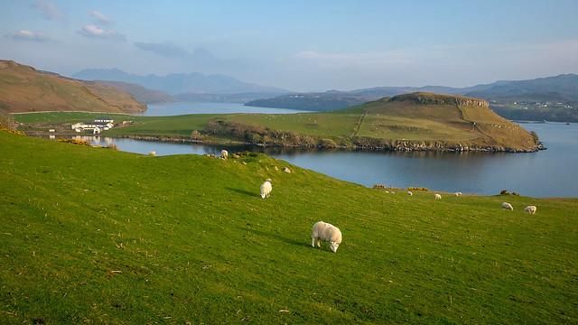 Skye Scene
