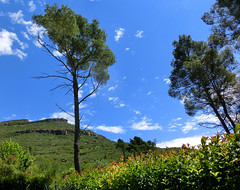 Montserrat | Монсеррат @ Barcelona