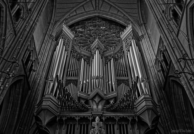 The Walker Organ. Lancing College Chapel (Mono)