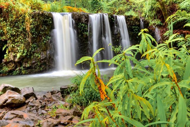 Waterfall on the road to Hana Maui Hawai'i