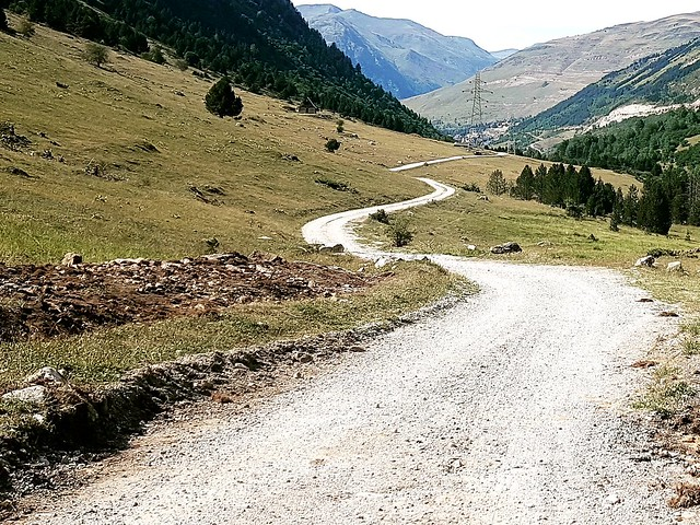 El camí  -  The way