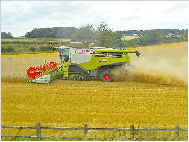 Harvest Time ..