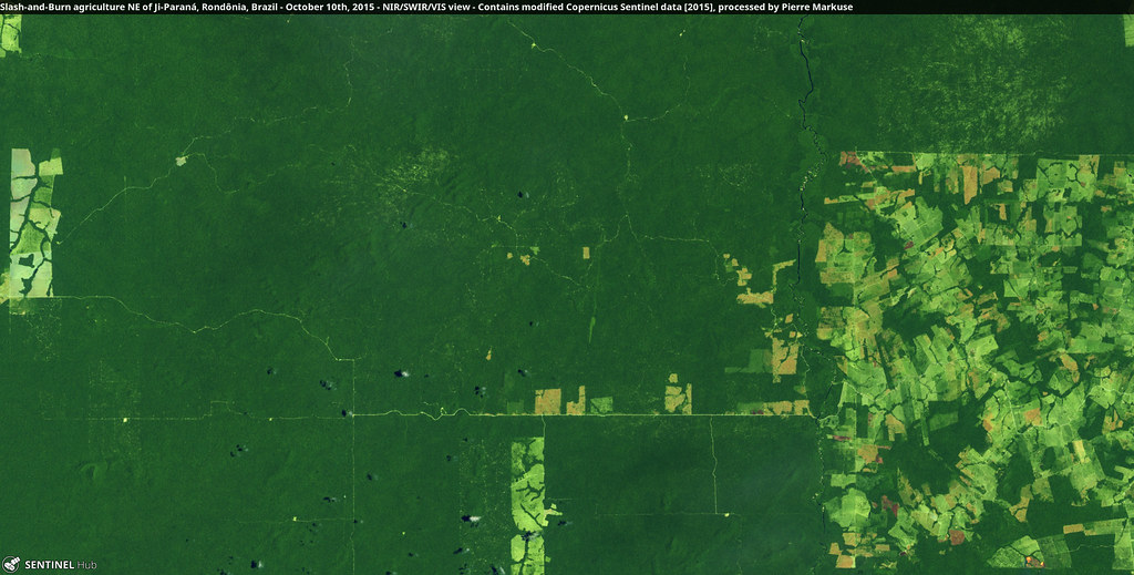 Slash-and-Burn agriculture NE of Ji-Paraná, Rondônia, Brazil - October 10th, 2015