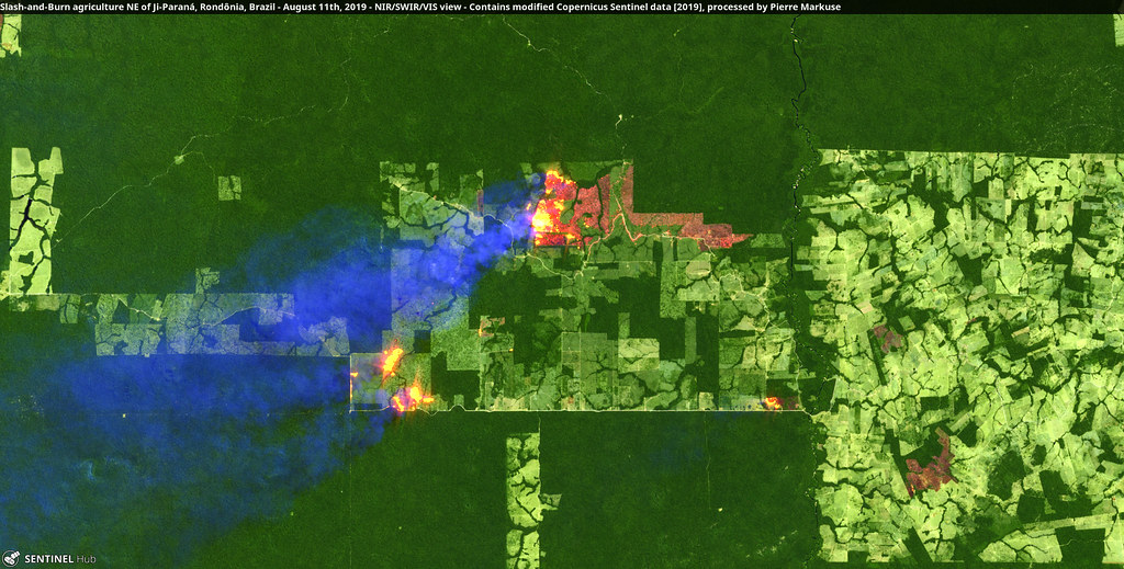 Slash-and-Burn agriculture NE of Ji-Paraná, Rondônia, Brazil - August 11th, 2019