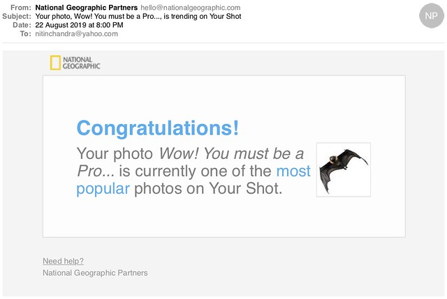 Your photo Wow You must be a Pro is trending on Your Shot