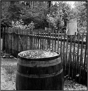 Rainwater for the garden_Rolleiflex 2.8E