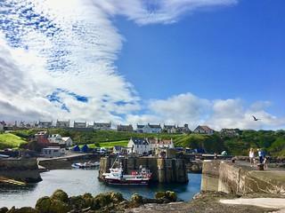Saint Abbs Harbour - Scotland