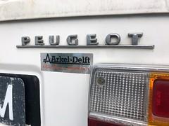 51-89-XM Peugeot 304
