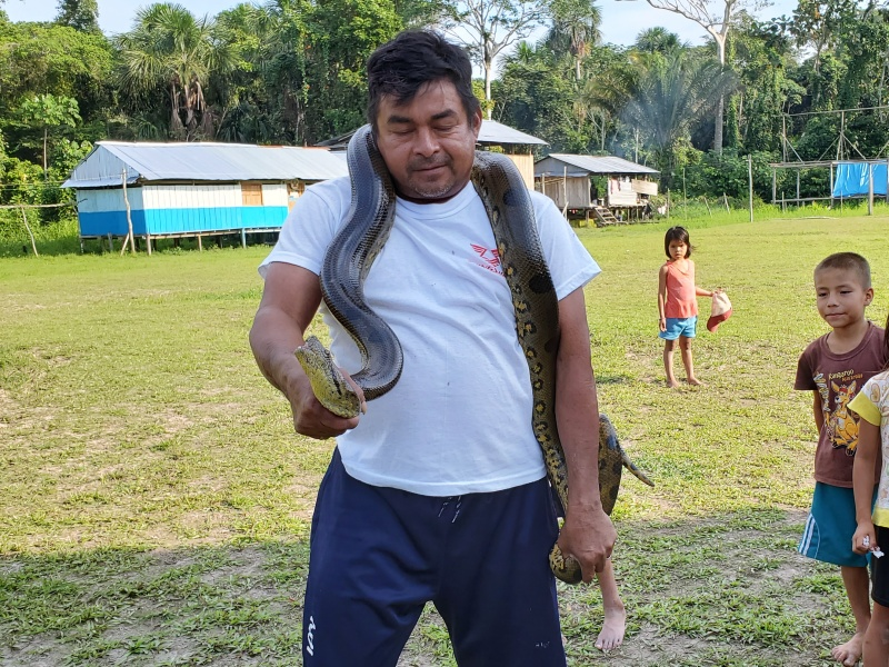 Anaconda in the Amazon
