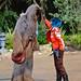 "<p><a href=""https://www.flickr.com/people/43153185@N00/"">disneylori</a> posted a photo:</p>  <p><a href=""https://www.flickr.com/photos/43153185@N00/48603210492/"" title=""Vi Moradi and Chewbacca""><img src=""https://live.staticflickr.com/65535/48603210492_b8c8528afa_m.jpg"" width=""160"" height=""240"" alt=""Vi Moradi and Chewbacca"" /></a></p>"