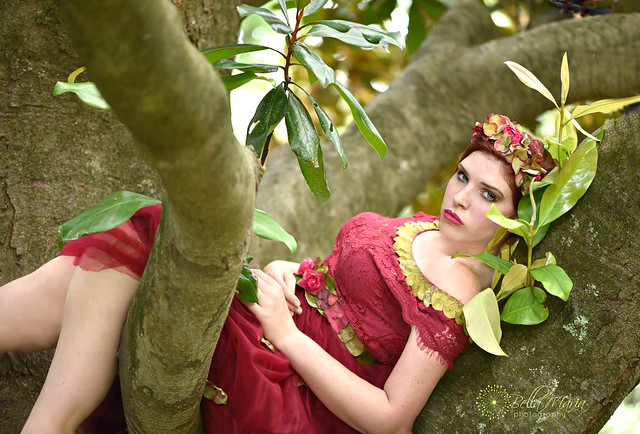 koren magnolia rest