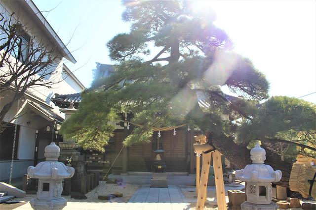 zuikoji-gosyuin004