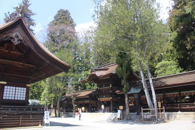 suwashimoaki-gosyuin010
